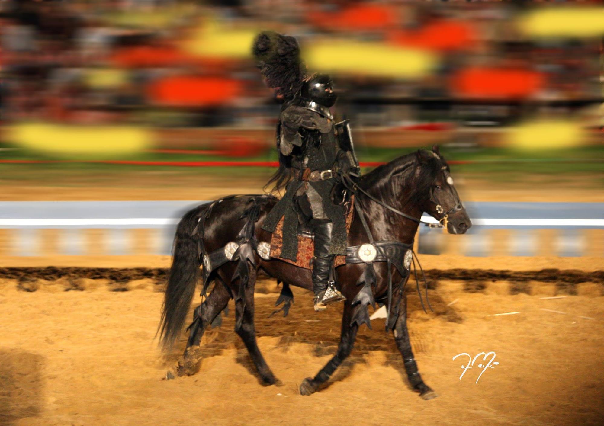 Start & Scale Your Equestrian Business webinar