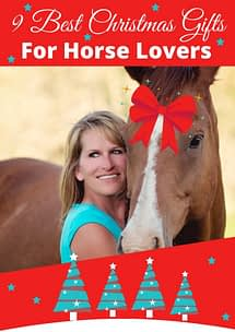 9 Best Christmas Gifts For Horse Lovers - EquiJuri