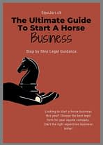 The Ultimate Guide to Start A Horse Business