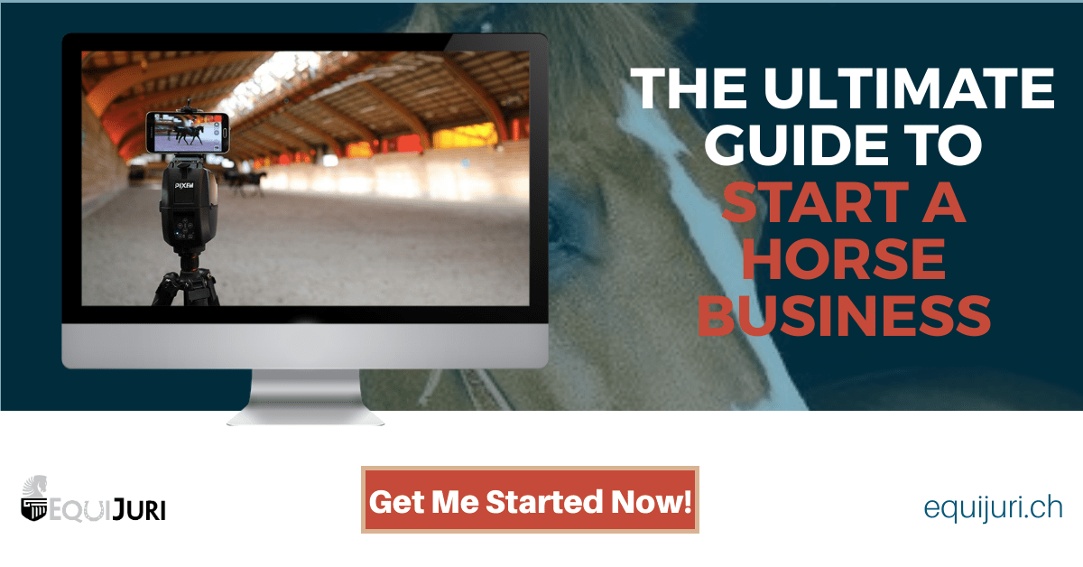 The Ultimate Guide To Start A Horse Business Equijuri