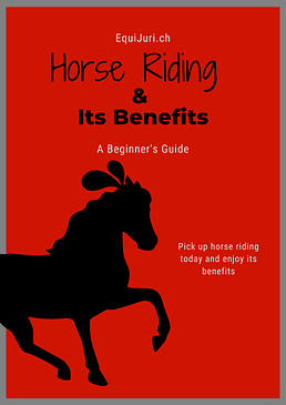Horse Riding & Its Benefits